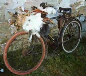 vélo peau de lapin